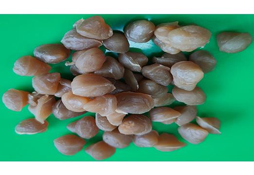 Vice brand nitrile rubber 3